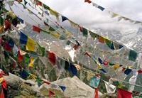 tibetanflags